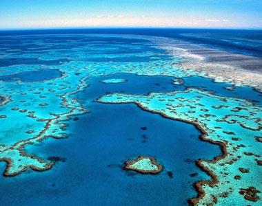 Great Barrier Reef.  Simply breathtaking.