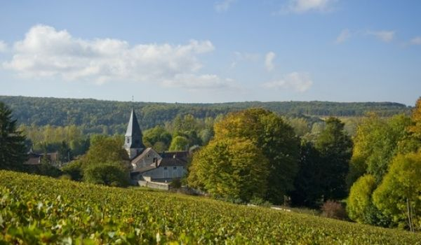 Gastronomie and walking 4 days 279€ | Champagne Breaks