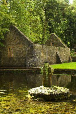 5th Century St. Patrick's Well, Ireland.5Th Century, Celtic Crosses, Ireland, 17Th Century, Emeralds Isle, Century St, Crosses 5Th, St Patricks, Patricks Well