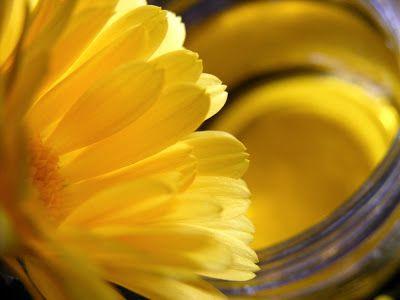 szeretetrehangoltan: Körömvirágolaj és kenőcs. Körömvirág, mint gyógynövény.