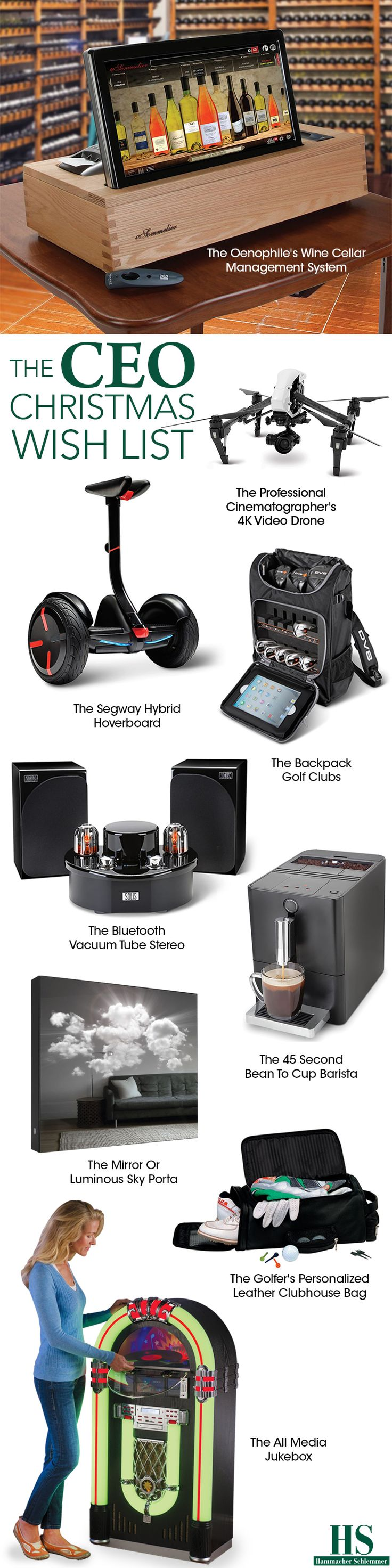 Check out the CEO Christmas wish list from Hammacher Schlemmer