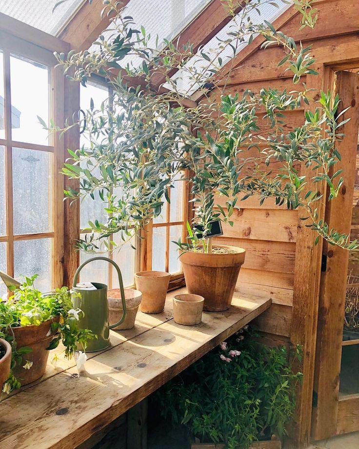 "Amy Williams ️ Waco, Tx On Instagram: ""The Garden Area Is"