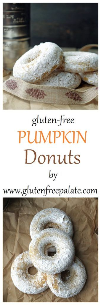 With their pleasing texture, tender bite, and scrumptious pumpkin flavor, these Gluten-Free Pumpkin Donuts will be a new favorite in your house this fall. Not to mention your house will smell amazing - but that's just an added bonus.