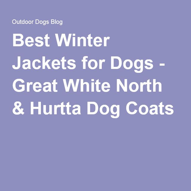 Best Winter Jackets for Dogs - Great White North & Hurtta Dog Coats