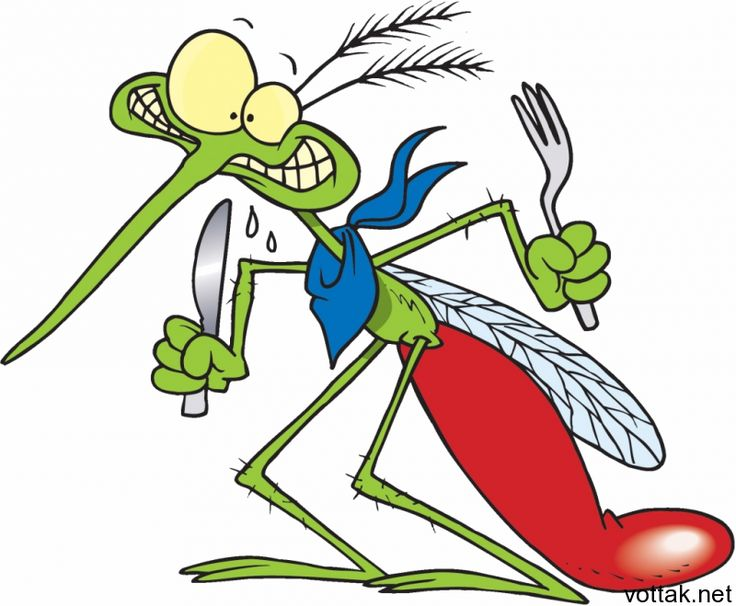 Как избавиться от комаров? | Вот так!
