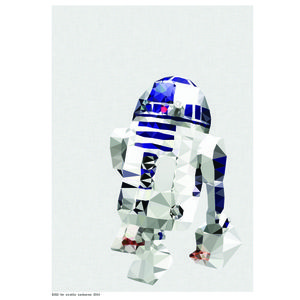 R2D2 is printed on to quality archival 190gsm paper 210mm x 297mm (A4) each print is carefully packaged in a cello envelope and protected by a thick cardboard backing
