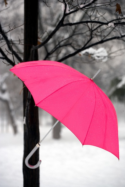 """In the Pink!"" Umbrella (in.very.good.health)"