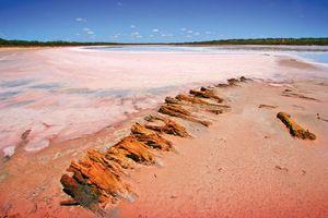Pink Salt Lakes near Underbool, Mallee, Victoria
