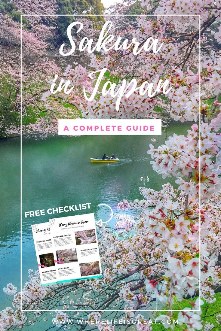 A complete guide to SAKURA - cherry blossom festival in Japan + a free checklist with Tokyo & Kyoto best viewing spots!