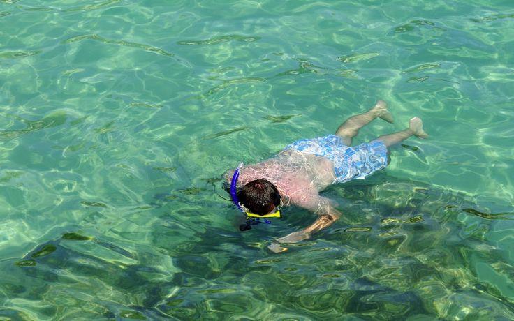 Der er mange fine badebugter på Mallorca, så du kan sagtens finde snorkleudstyret frem og se hvad der gemmer sig under overfladen. Se mere på http://www.apollorejser.dk/rejser/europa/spanien/mallorca