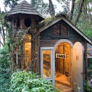 33 Best Images About Chook House On Pinterest A Shed A