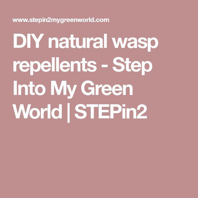 DIY natural wasp repellents - Step Into My Green World | STEPin2