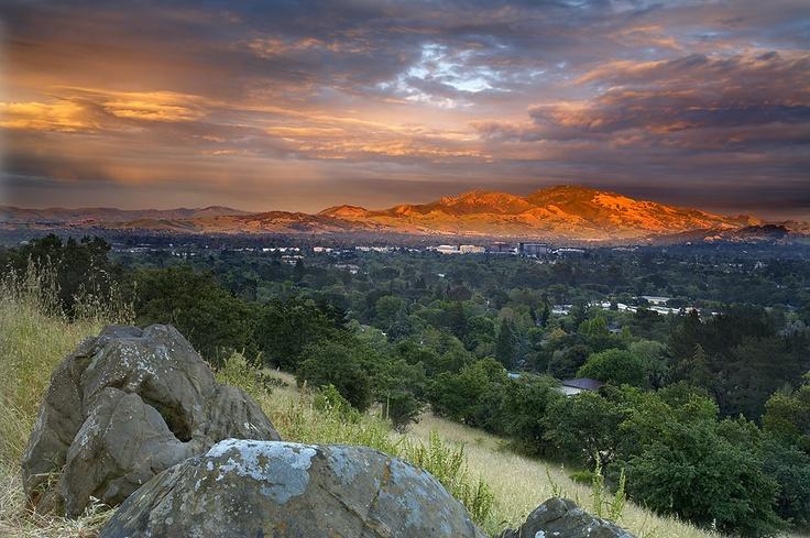 Pleasant Hill, California - Where I grew up!