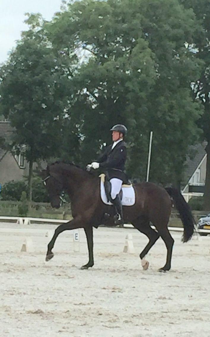 Championship in Waddinxveen so proud of Wish (rivermanxwelington)