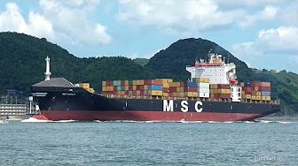 MSC NATALIA - Mediterranean Shipping Company container ship - 2016 - YouTube