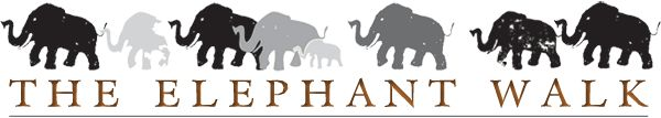 The Elephant Walk Restaurant -   Boston, Cambridge & Waltham   ** I love this place : ) !  Delicious vegan dishes are offered **