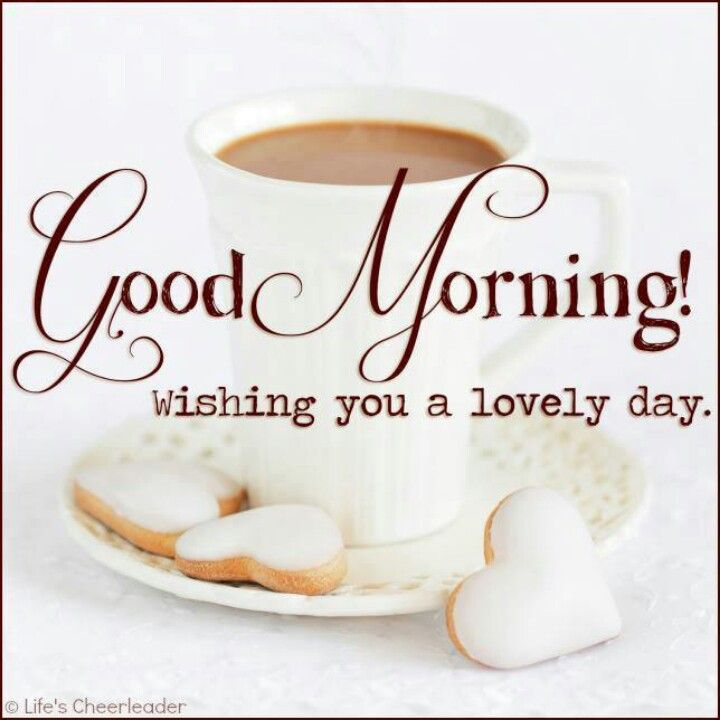 Good Morning Beautiful Hope You Have A Great Day : Good morning hope you guys are having will have a
