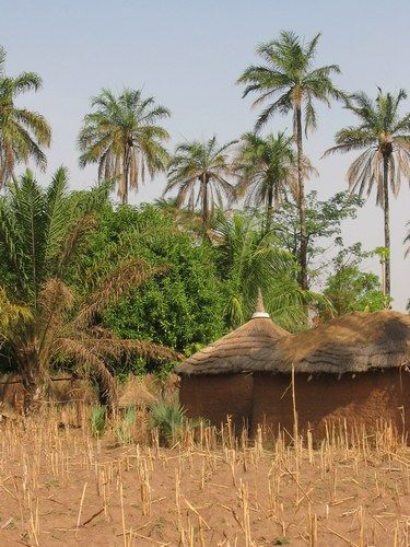 "Au village, Togo .................. #GlobeTripper® | https://www.globe-tripper.com | ""Home-made Hospitality"" 