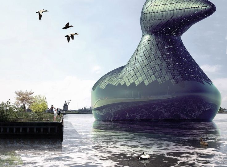 Giant Solar Energy Sea Duck