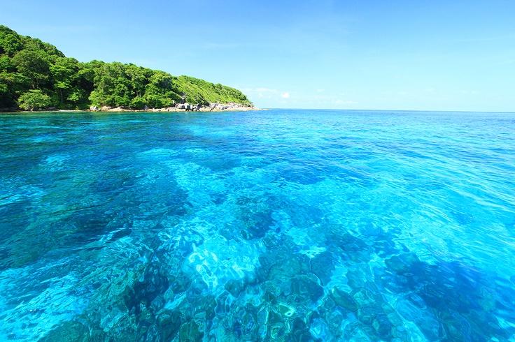 The crystal clear waters at Tachai Island #casadelaflora #khaolak #tachaiisland