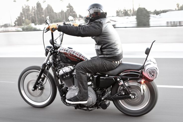 Burly Brand - Long Black Sissy Bar fits '04-'15 Harley XL ...