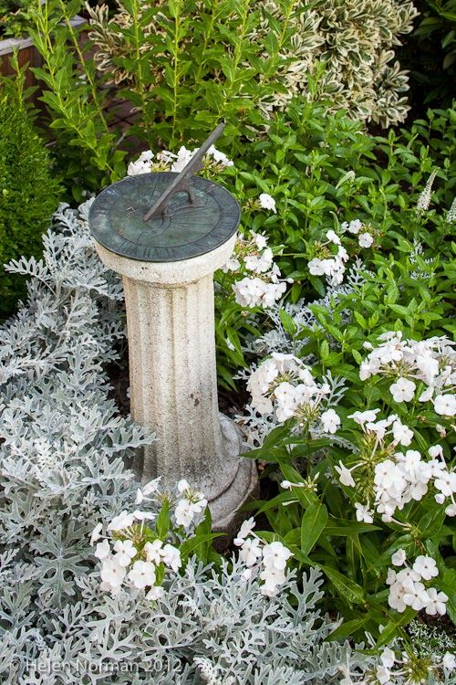 Tucked among dusty millers and phlox is a simple granite sundial. In an all white garden, foliage is especially important. Combine silvery, ...