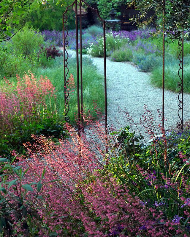 California Native Plant Landscape Design Examples: 409 Best Natives Images On Pinterest