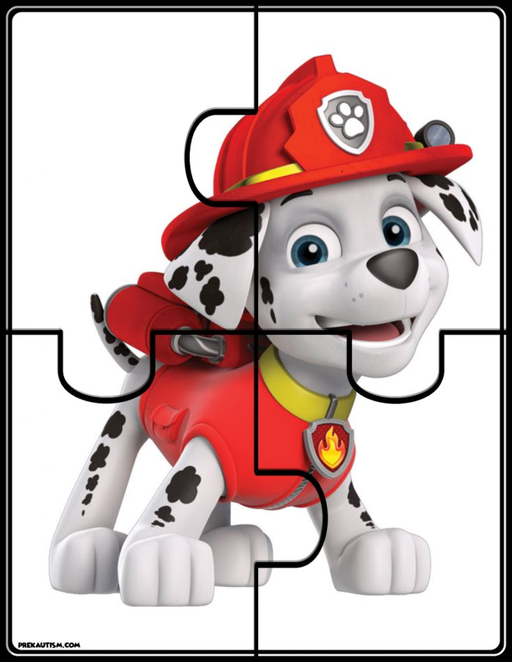 Free printable materials for working on basic skills. #pawpatrol #homeschool #autism