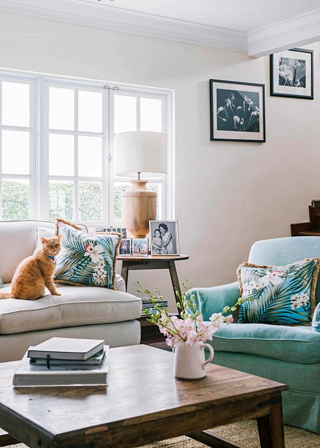 Pavlov - Antonia Kidman's lovely cat | Home Beautiful Magazine Australia
