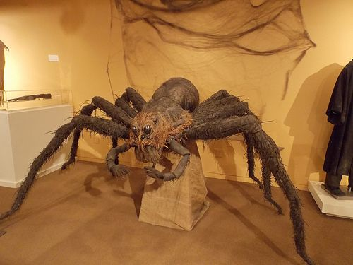 86 Best Images About Spider Props Amp Webbing On Pinterest