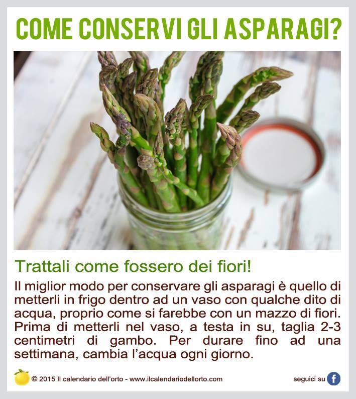 Come conservi gli asparagi?