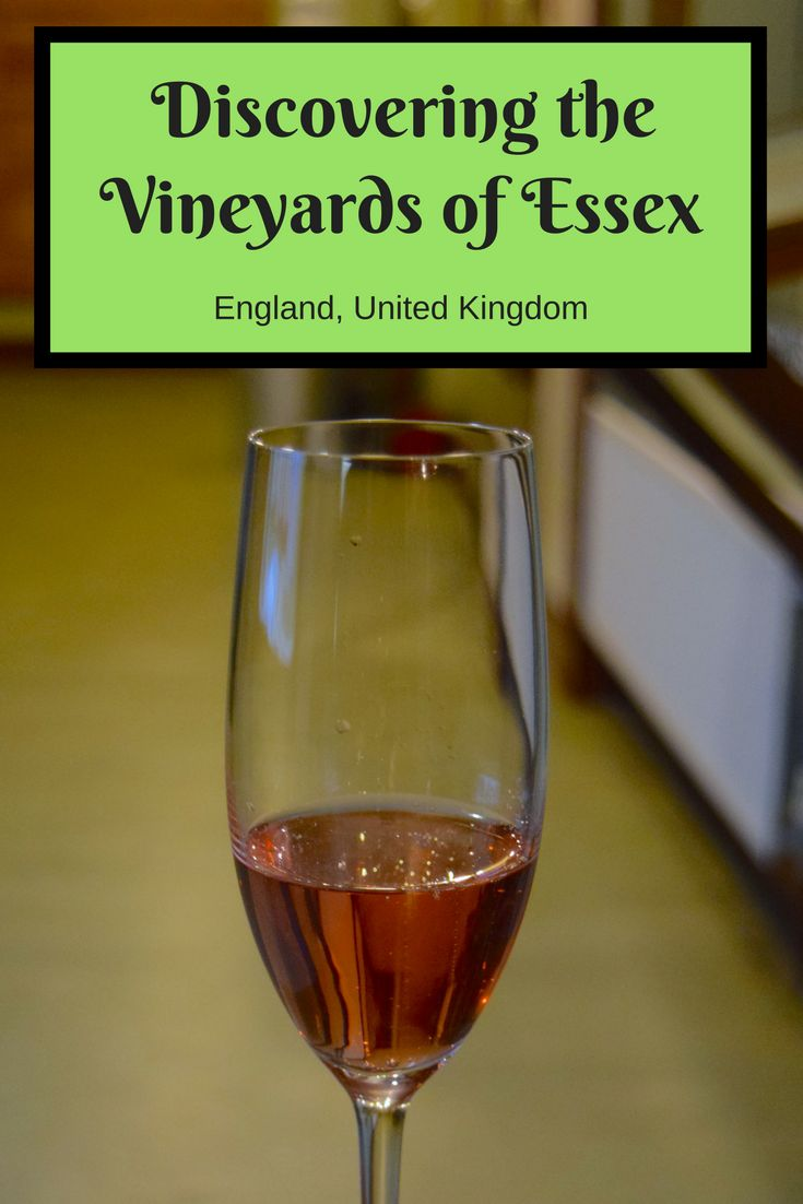 I was recently shown around the vineyards in Essex and discovered how amazing English wine is. Find out why I loved the vineyards Essex has to offer