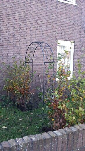 De heg krijgt een poortje naar de voortuin