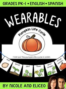 This downloads in English plus a FREE Spanish version. It has a variety of resources for your pumpkin life cycle unit or lessons. It includes a crown, necklace and bracelet craft template with instructions and vocabulary cards. I use these pumpkin life cycle activities to support academic language development.