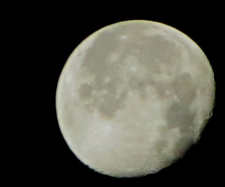 Moon, taken with my pocket camera