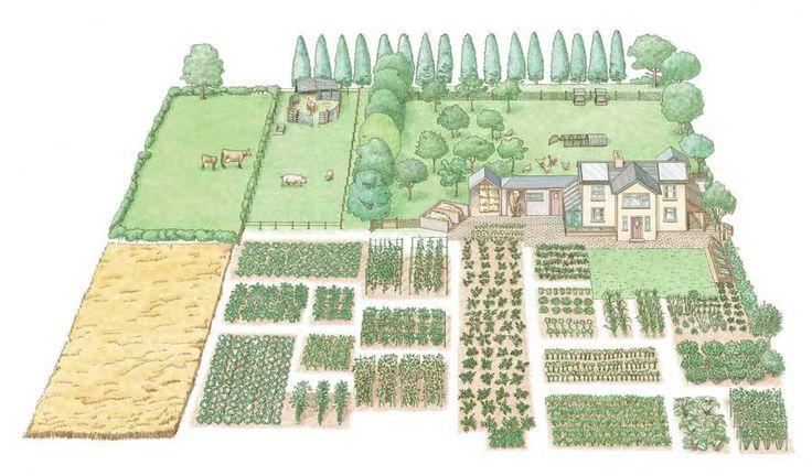Cada uno tendrá una idea diferente de cómo componer una granja autosuficiente, y es poco probable que haya dos granjas de media hectárea que sigan el mismo