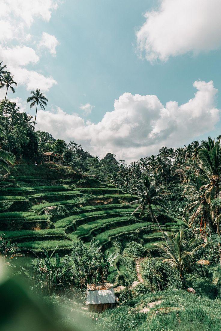 Bali Reise Mit Meiner Schwester Kelly Verlobt Kreative In 2020 Bali Travel Asia Travel Beautiful Places Beautiful Places To Travel