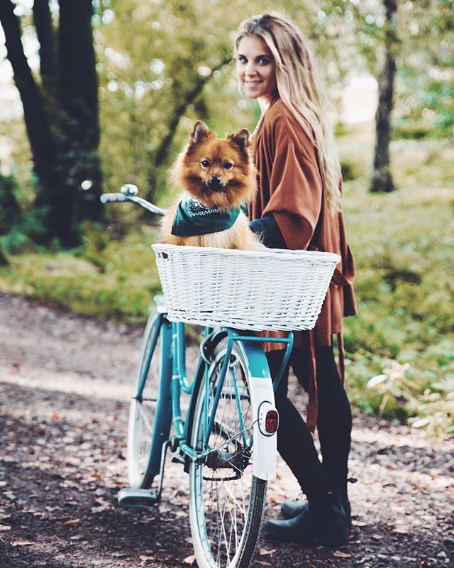 One more from Boulogner. #fox #mittelspitz #mydog  @fotokempe