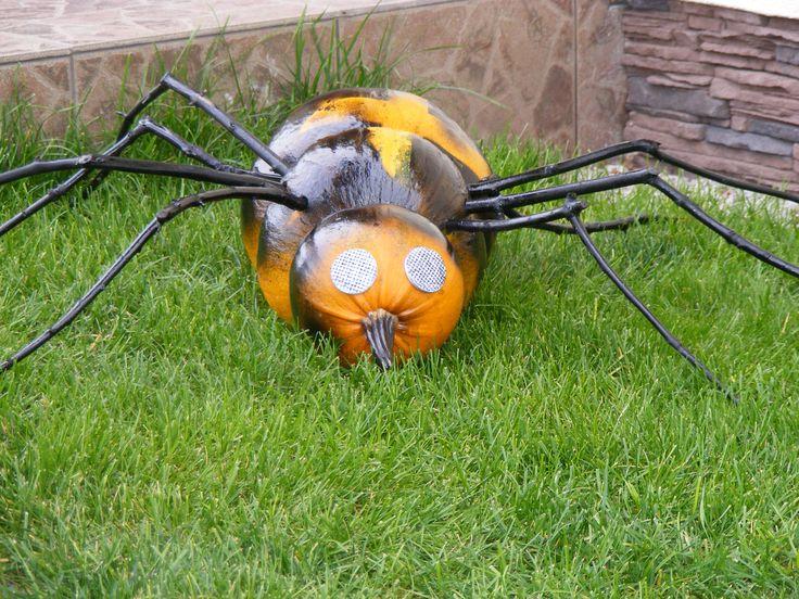 pavúk z tekvíc