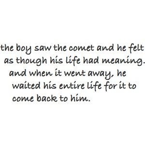 The boy saw the comet and he felt as if his life had meaning <3