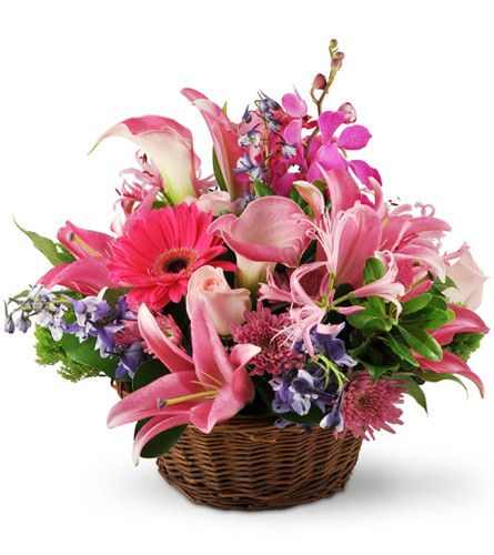 This beautiful basket of pink Asiatic and calla lilies, roses, mums, orchids and daisies will also carry along your thoughts and good wishes. Our pink-themed Hearts and Flowers arrangement is perfect for get-well and sympathy wishes, or to say thank you to someone special.This elegant basket overflows with Asiatic lilies, calla lilies, roses, delphinium, nerine, mokara orchids, mums, and more.