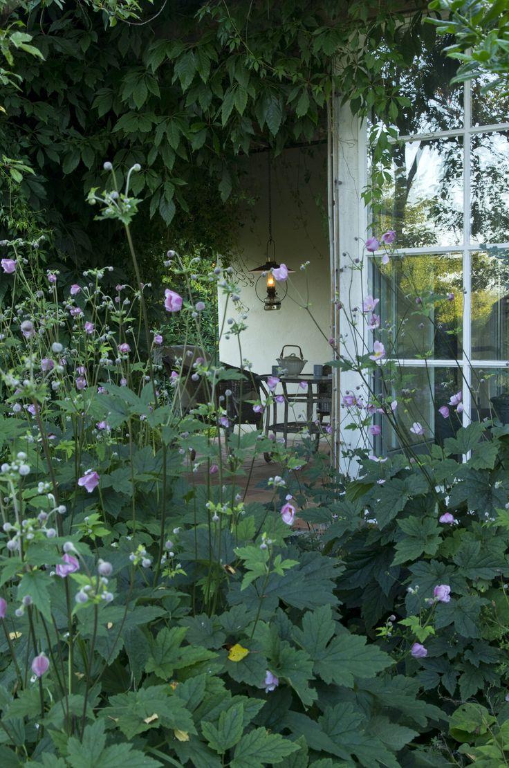 The garden of Sanna Töringe, photo Sophia Callmer