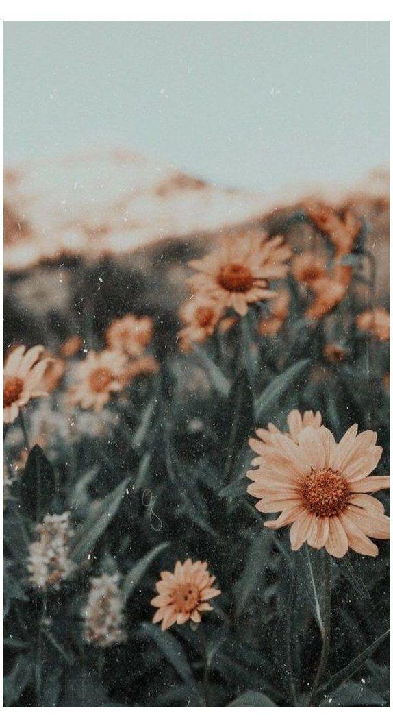 Tumblr Photography Blog Wanderlog 74078 Retro Vintage Retrovintage Ocean Inspired Fa In 2020 Wallpaper Tumblr Lockscreen Sunflower Wallpaper Pretty Wallpapers