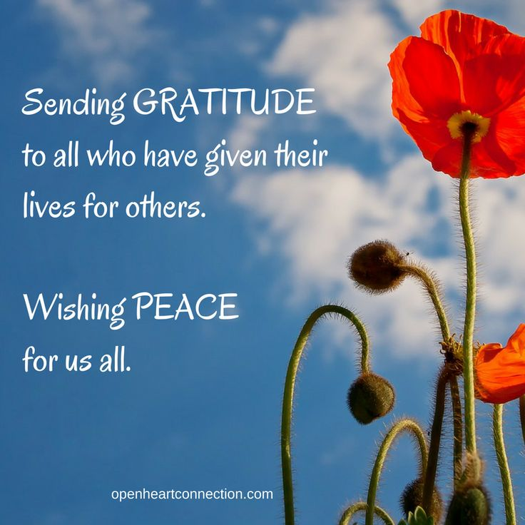 Sending GRATITUDE to those who have given their lives for others. Wishing PEACE for us all