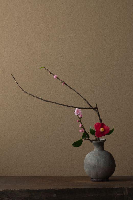 花人: 川瀬敏郎 花: 花桃(桃),山茶花布什出雲(出雲代謝山茶) 器: 花瓶Sueki =船隻(古墳)                                                                                                                                                                                 Plus