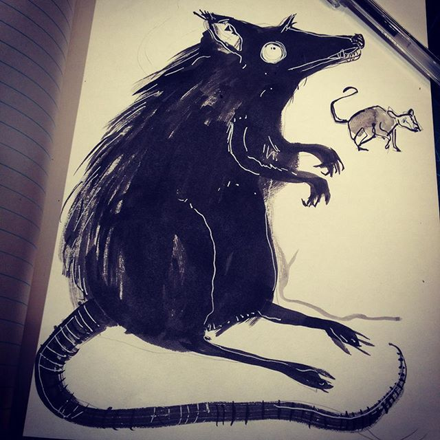Day 21. Rats. Black rat. Black ink. Coming a day early have a busy few days ahead of me!#drawloween2016 #ink #mabsdrawlloweenclub #mabgraves #irishillustrator #igersdublin
