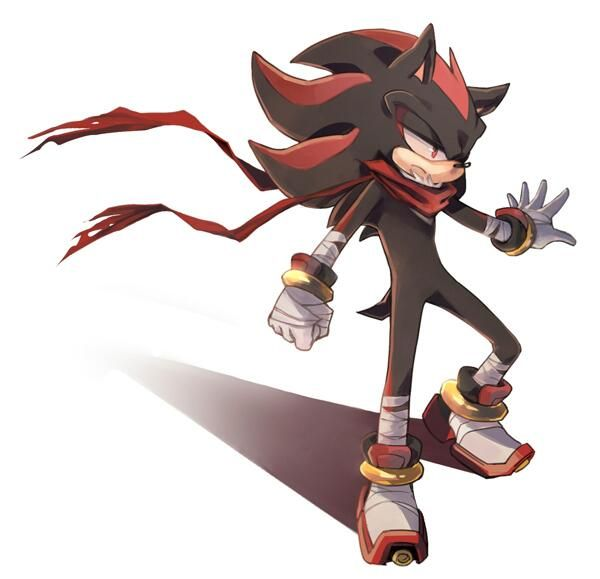 Shadow the hedgehog but there's a problem in the picture HE HAS A SHADOW. Shadow can't have a shadow because of Mephiles