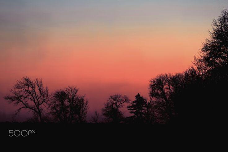 Sundown - Sundown over the trees