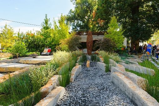 265 best suds and water sensitive images on pinterest for Cycas landscape design