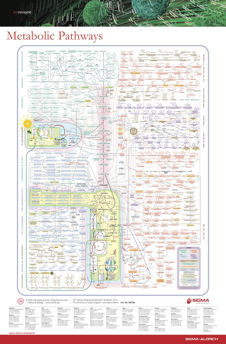 online biochemistry course
